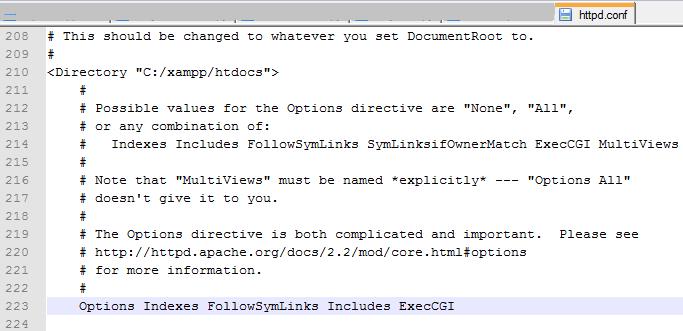 optionsindexes_apache options indexes_options indexes followsymlinks  multiviews_options indexes followsymlinksdingjisc.com
